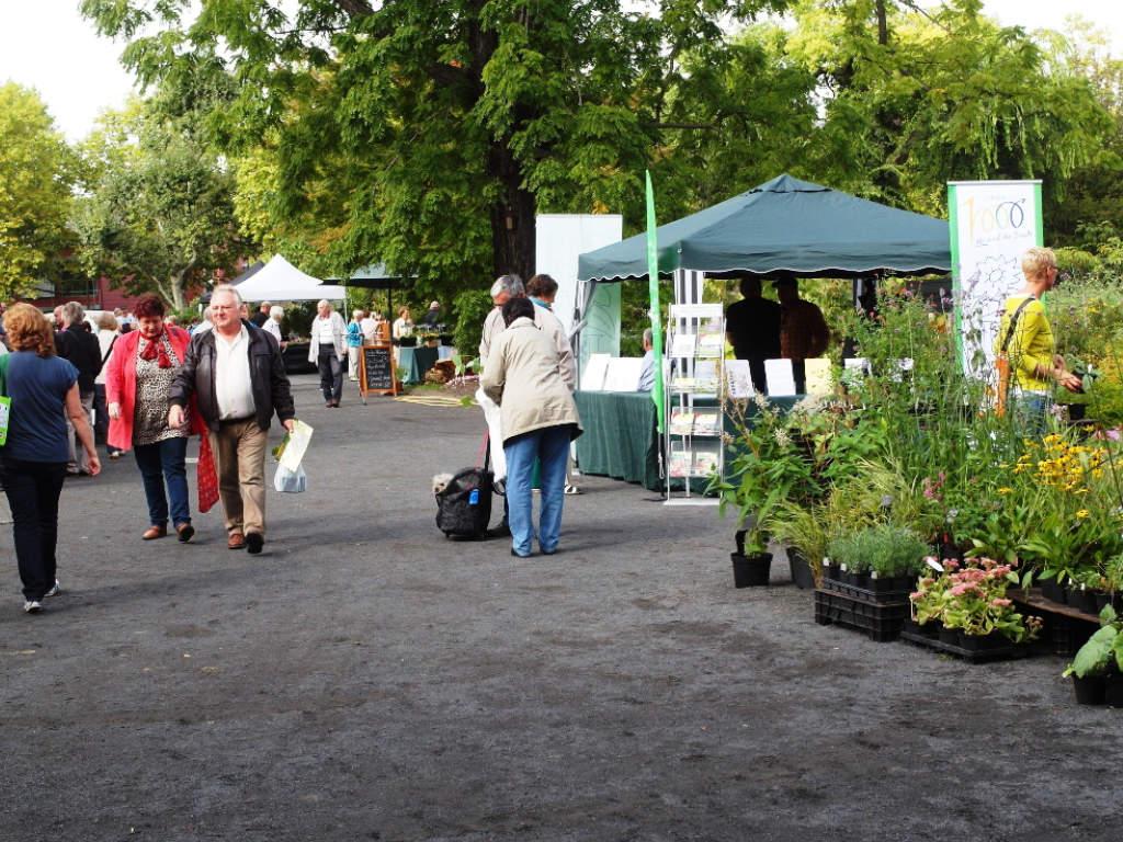 Pflanzenmarkt Im Botanischen Garten Stadtverband Leipzig Der Kleingartner E V